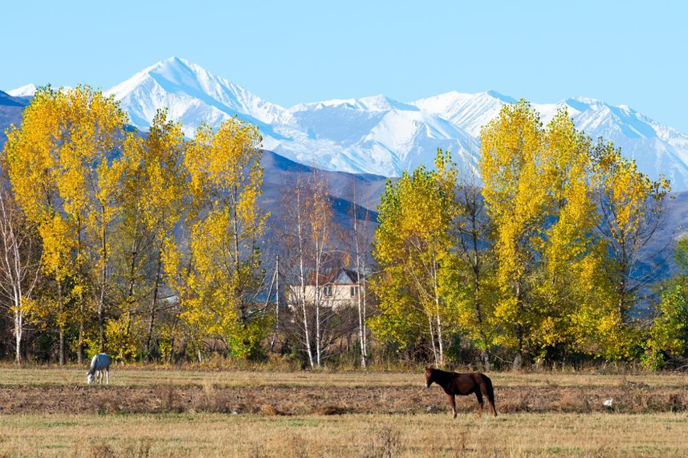 Les plus belles randonnées d'une journée près de Bichkek