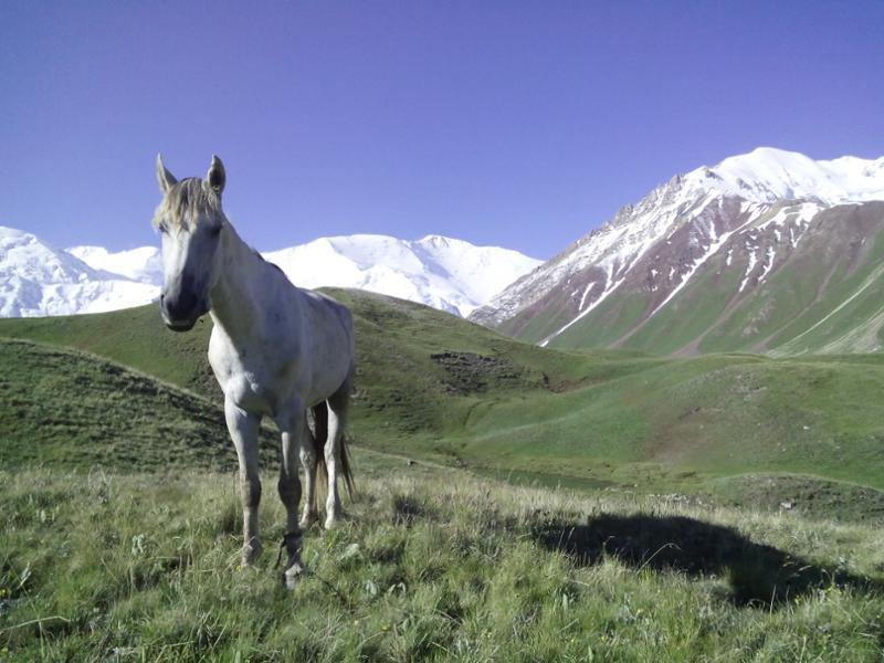 Quels sommets grimper au Kirghizistan