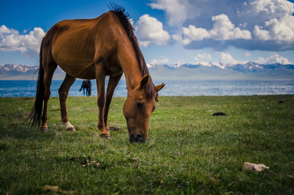 Les 7 plus beaux lacs du Kirghizistan